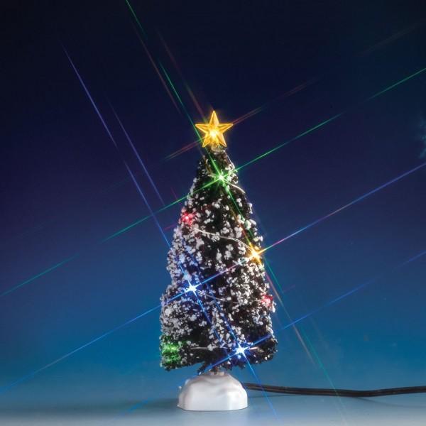 Immergrüner Baum mit 12 bunten Lichtern